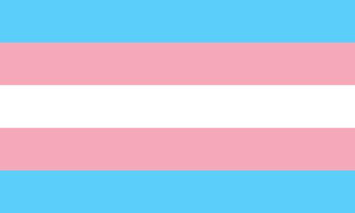 drapeau transgenres